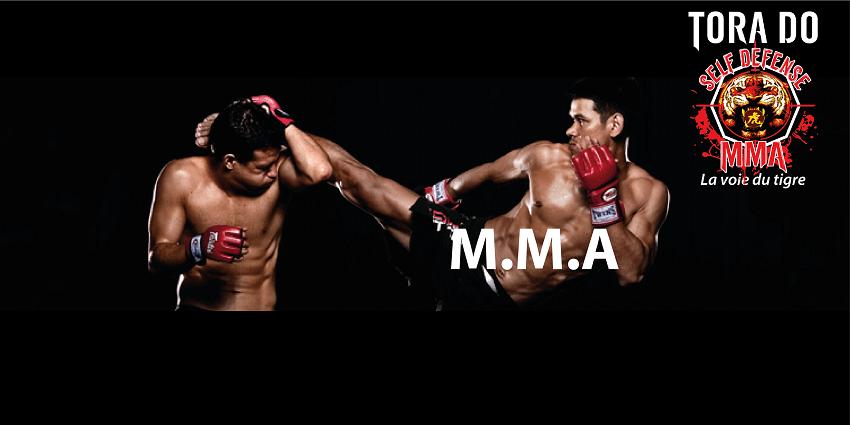 DISCIPLINE-MMA
